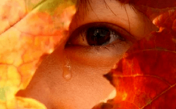 眼部溢泪可能会引起哪些疾病