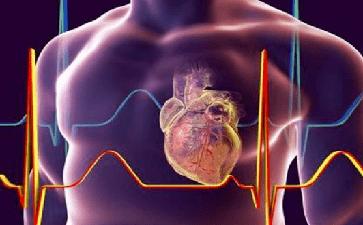 心血管疾病因为什么原因如此高发