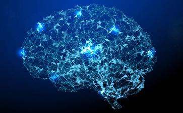 大脑跟癫痫发作有什么关系